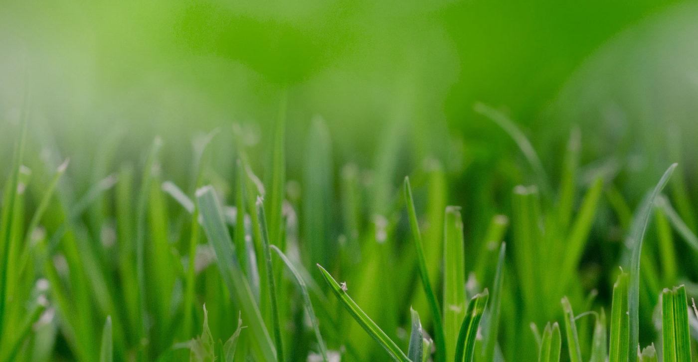 Pianificare la sostenibilità - PREREQUISITI OBBLIGATORI